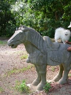 ロック、乗馬初体験?!