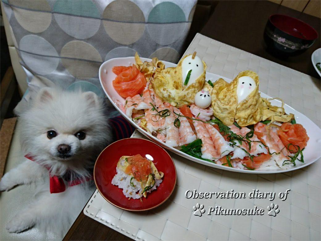 ひなまつりのちらし寿司とロック