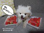 イチゴあむあむ。