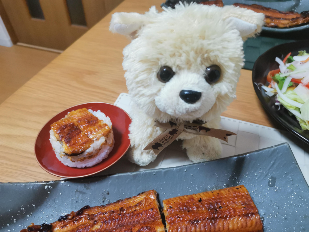 うなぎのミニ押し寿司